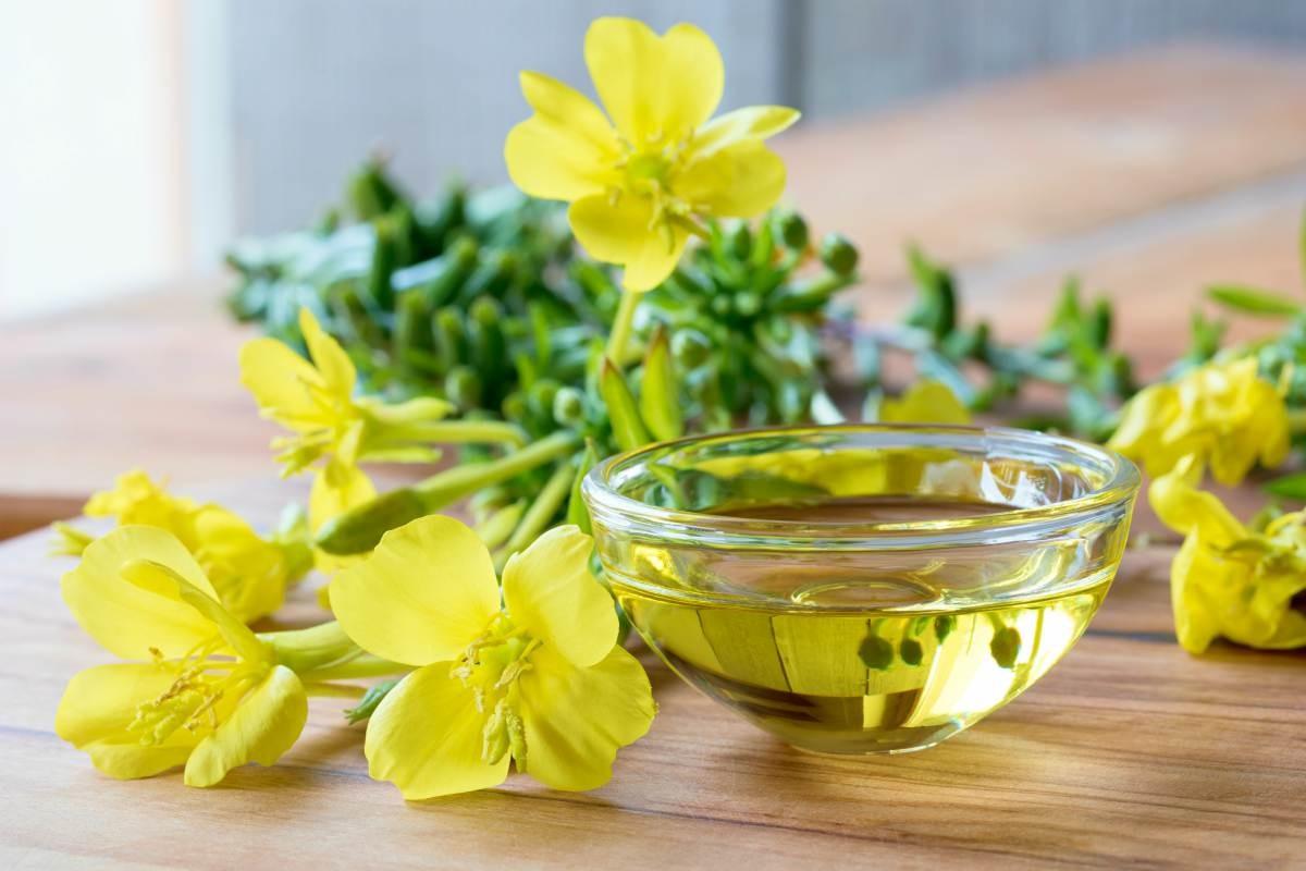 7 công dụng của tinh dầu hoa anh thảo cho sức khỏe và sắc đẹp