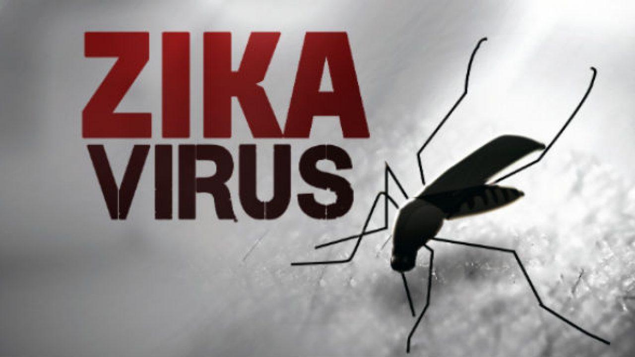 Virus Zika là gì? Nguyên nhân và triệu chứng nhiễm Virus Zika
