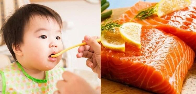 Trẻ mấy tháng ăn được cá hồi giải đáp từ chuyên gia