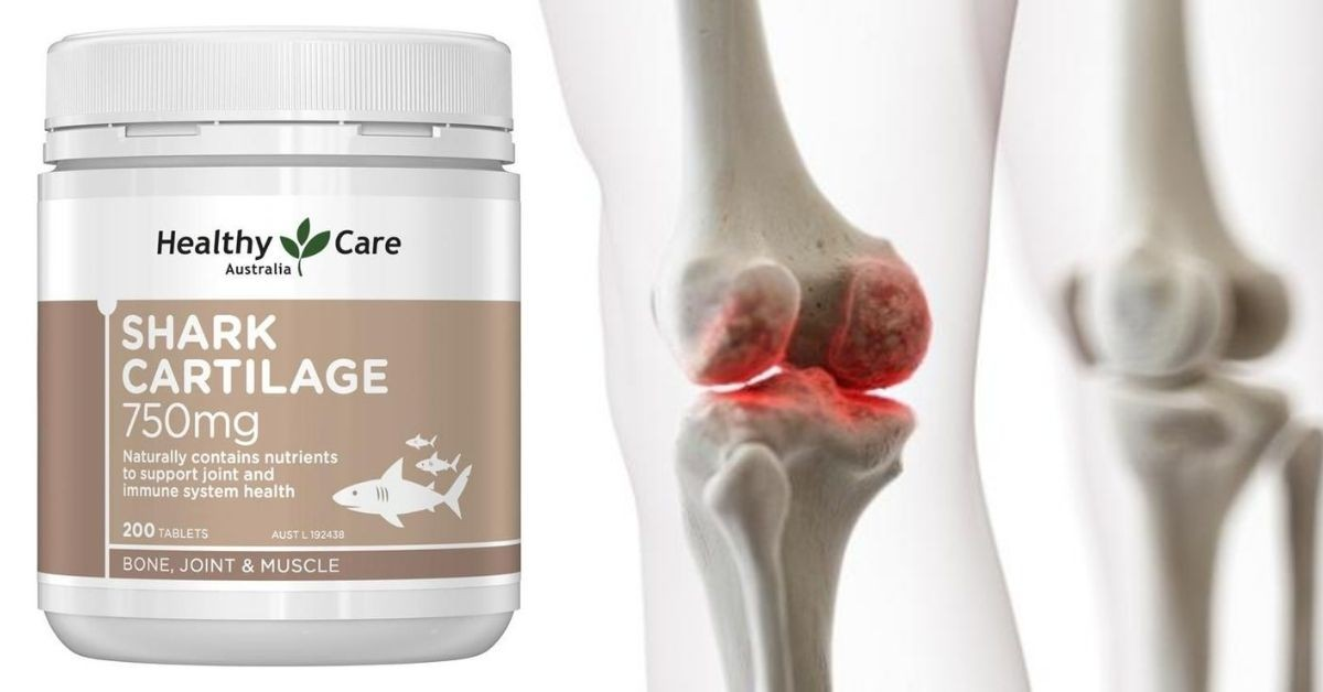 Review Healthy Care Shark Cartilage 750mg 200 tablets có tốt không
