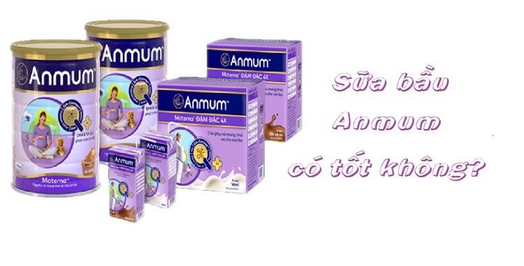 Review sữa bầu Anmum có tốt không?