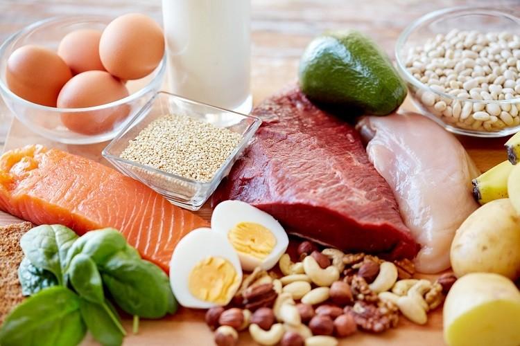 Protein đóng vai trò tạo ra kháng thể miễn dịch