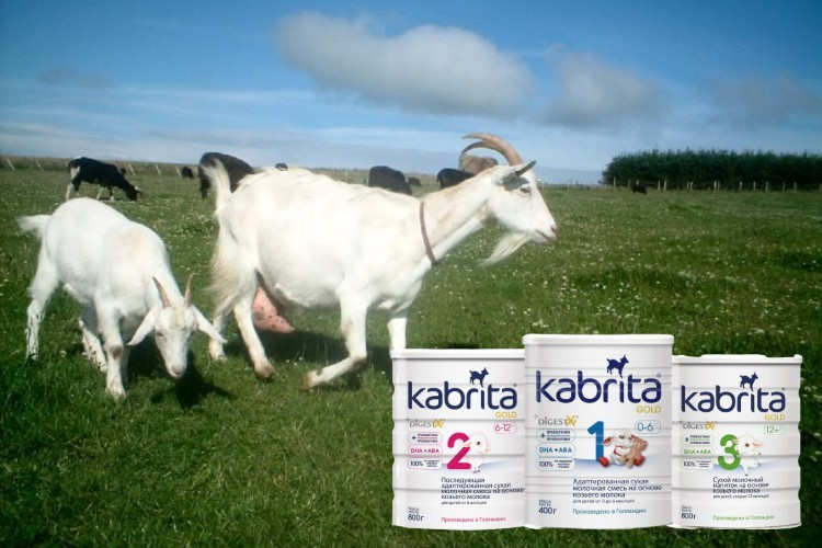 sữa dê kabrita, sữa dê kabrita số 3, sữa dê kabrita số 1, sữa dê kabrita số 2, sữa dê kabrita review, sữa dê kabrita 1 nga, bột ăn dặm sữa dê kabrita, sữa dê kabrita có tốt không, sữa dê kabrita nga có tăng cân không, váng sữa dê kabrita, so sánh sữa dê vitacare và kabrita, sữa dê kabrita giá bao nhiêu, sữa dê kabrita 2, sữa bột dê kabrita, sữa dê kabrita có tăng cân không, đánh giá sữa dê kabrita, cách pha sữa dê kabrita, cháo sữa dê kabrita, cách pha sữa dê kabrita 2, sữa dê kabrita số 1 có tốt không, sữa dê kabrita số 3 800g, sữa dê kabrita và vitacare, sữa dê kabrita 2 nga, sữa dê kabrita bán ở đâu, bột cháo sữa dê kabrita, cách pha bột sữa dê kabrita, sữa dê kabrita của nga, sữa dê kabrita của hà lan, sữa dê kabrita có tốt ko, sữa dê kabrita của nước nào, công dụng của sữa dê kabrita, mua sữa dê kabrita ở đâu, sữa dê kabrita giả, giá sữa dê kabrita số 3, sữa dê vitacare hay kabrita, sữa dê kabrita tốt không, cách pha sữa dê kabrita số 1, cách pha sữa dê kabrita 3, cách pha cháo sữa dê kabrita, sữa dê kabrita 400g, cách pha sữa dê kabrita số 2