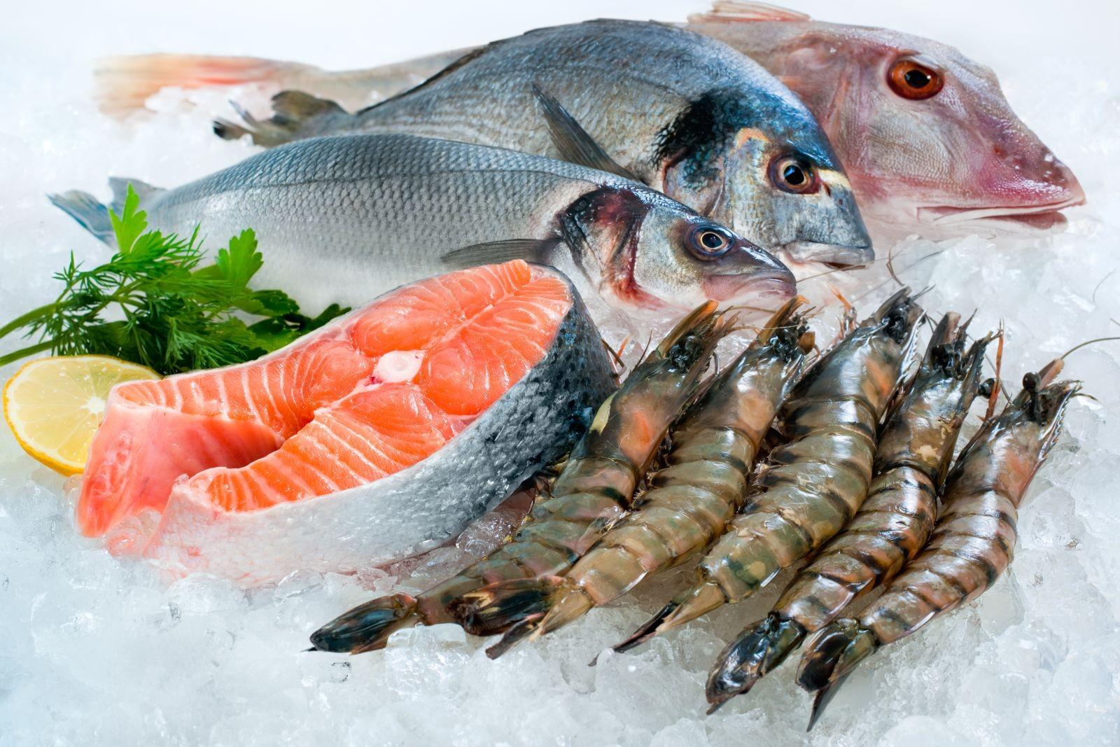 Các loại cá quá tanh
