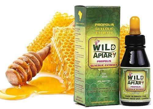 Brazil Wild Apiary