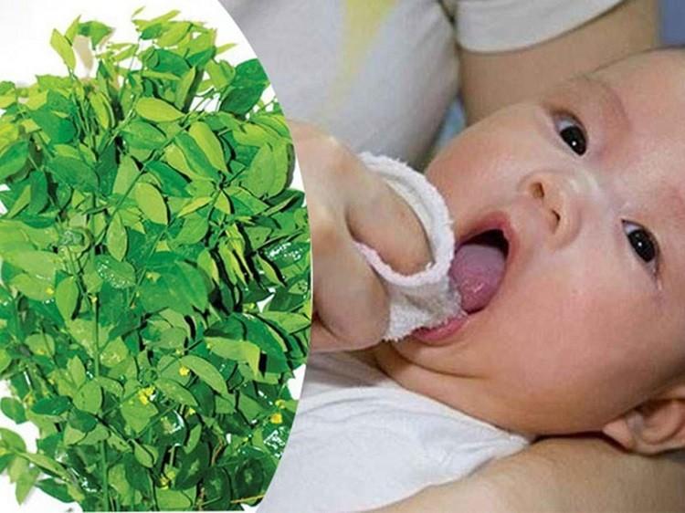 đồ rơ lưỡi cho trẻ sơ sinh, cách rơ lưỡi cho bé sạch, hướng dẫn rơ lưỡi cho trẻ sơ sinh, mẹo rơ lưỡi cho trẻ sơ sinh, rơ lưỡi cho trẻ sơ sinh bằng nước gì, cách rơ sạch lưỡi cho trẻ sơ sinh, hướng dẫn cách rơ lưỡi cho trẻ sơ sinh, cách rơ lưỡi sạch cho trẻ sơ sinh, rơ lưỡi cho trẻ sơ sinh như thế nào, cách làm sạch rơ lưỡi cho trẻ sơ sinh, cách lấy rơ lưỡi cho trẻ sơ sinh, cách rơ lưỡi cho trẻ sơ sinh bằng denicol, cách chữa rơ lưỡi cho trẻ sơ sinh